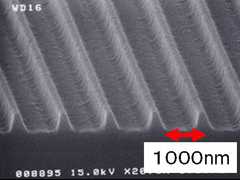 Nanostructured substrate for polalizor